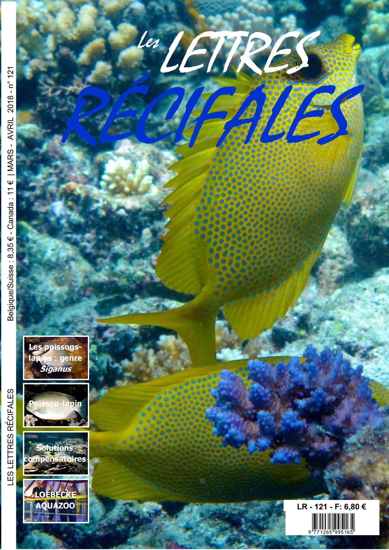 RÉCIF FRANCE - L\'aquariophilie marine et récifale à la portée de tous